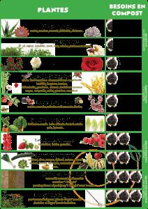 Besoin en compost des différentes plantes